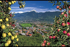 Marling bei Meran - [Nr.: marling-018.jpg] - © 1999 www.drescher.it
